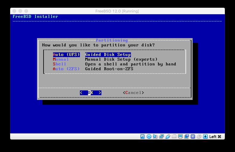 virtualbox-21-partitioning.png